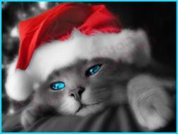 CUTE CHRISTMAS CAT IN SANTA HAT T-SHIRT - MENS WOMENS KIDS S